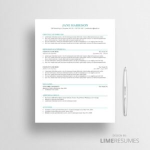 cv template for word microsoft word cv template limeresumes. Black Bedroom Furniture Sets. Home Design Ideas