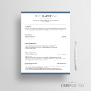 Resume template 35
